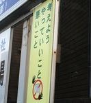IMG_5684.JPG